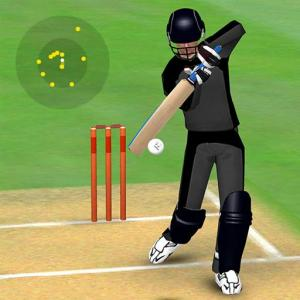 Smashing Cricket - a cricket game like none other Icon