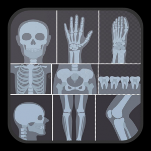 X-ray Interpretation for Medical Use Icon