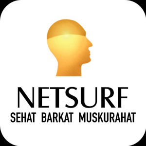 Netsurf Network Icon