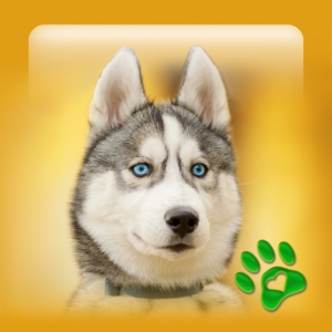 Best Dog Wallpapers and Themes All Breeds Icon