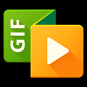 GIF to Video Icon