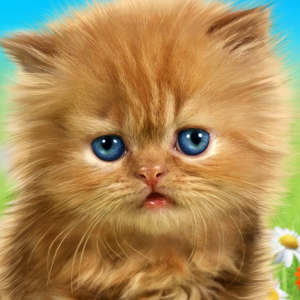 Talking baby cat😻 Talking game for kids. Icon