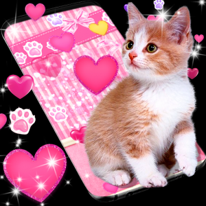Cute pink kitty live wallpaper Icon