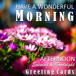 Good Morning Afternoon Evening Night Greeting Card Icon