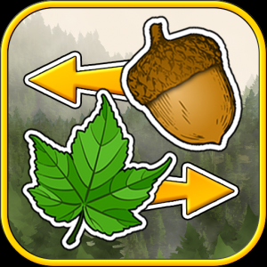 Sort the Forest Icon