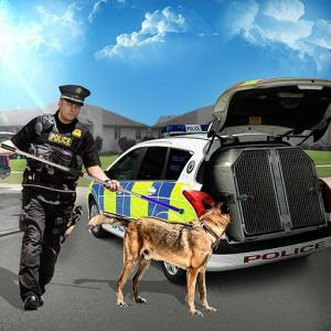 City Animal Transport Truck Rescue Dog games Icon