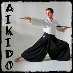 Learn aikido and martial arts Icon