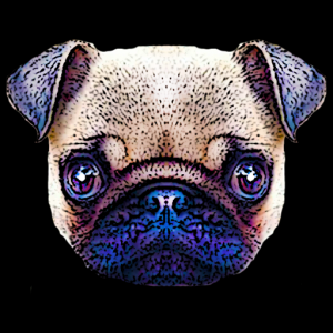 Puppystry Icon